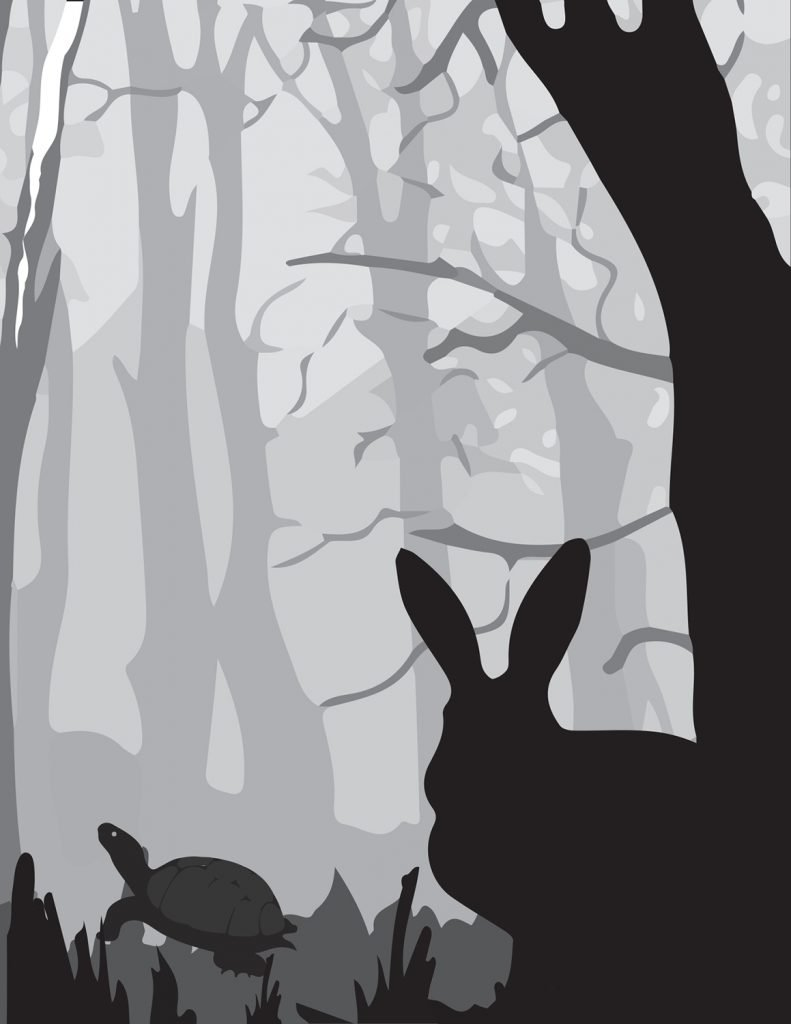book illustration student project